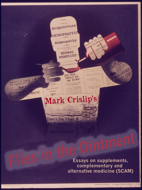 Available Now! Flies in the Ointment